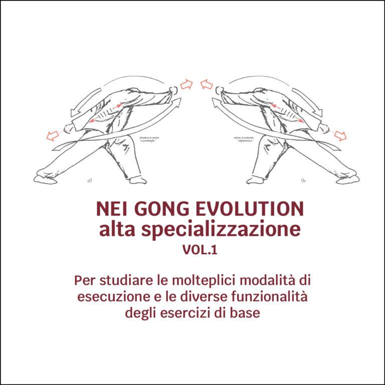 Nei Gong Evolution