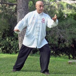 Il Maestro Flavio Daniele mentre pratica Taiji Quan